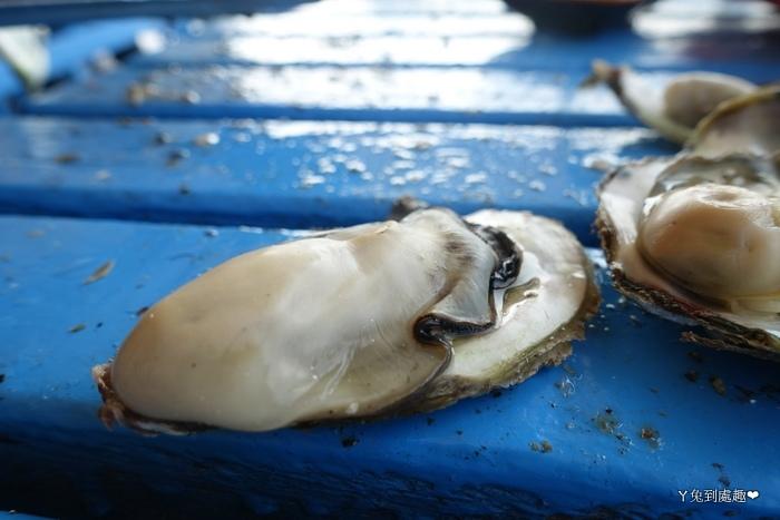 澎湖牡蠣吃到飽