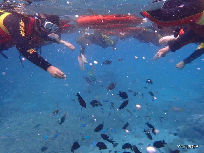 澎湖海底世界