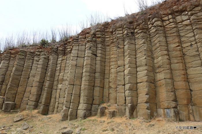 池東大菓葉柱狀玄武岩
