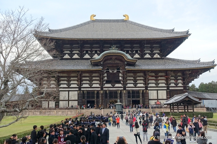 世界最大木造建築